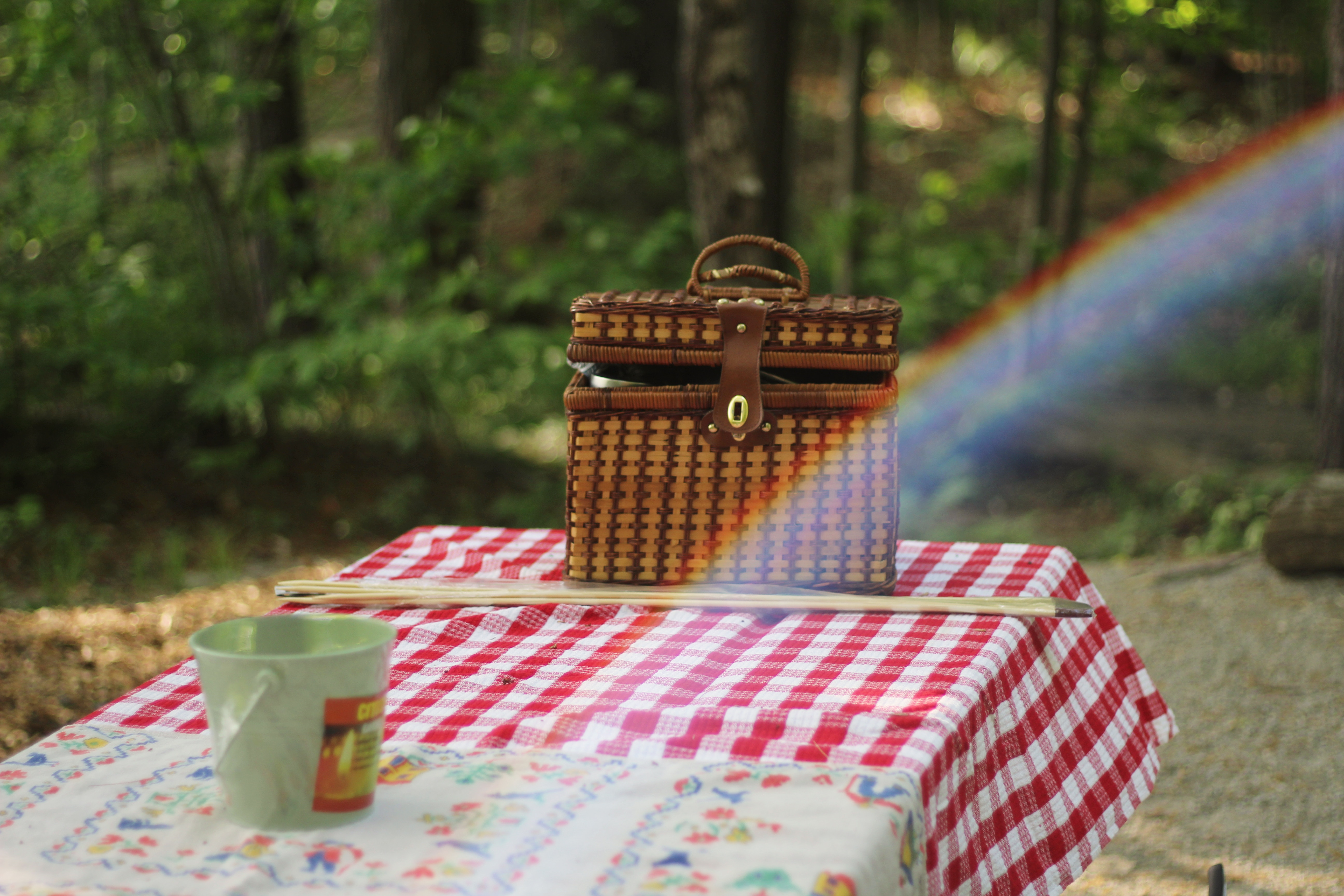 Best Spots To Picnic In Michigan Part I MARVAC - Picnic table michigan
